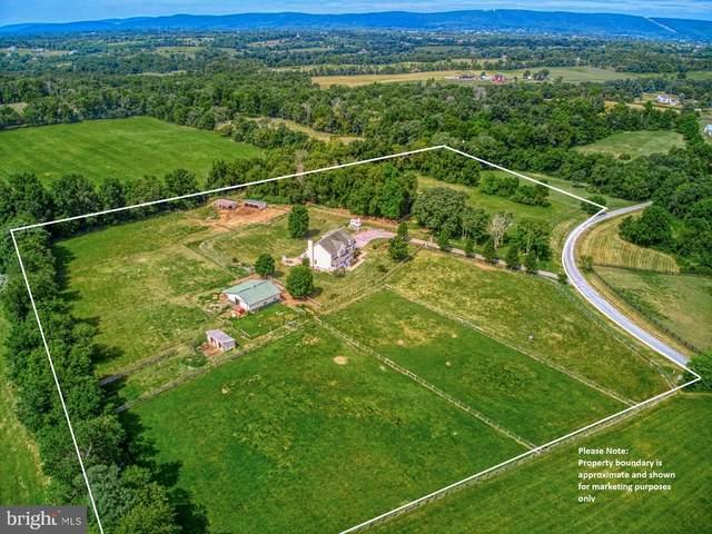 40205 Quailrun Court, LOVETTSVILLE, VA 20180 (#VALO417336) :: Debbie Dogrul Associates - Long and Foster Real Estate