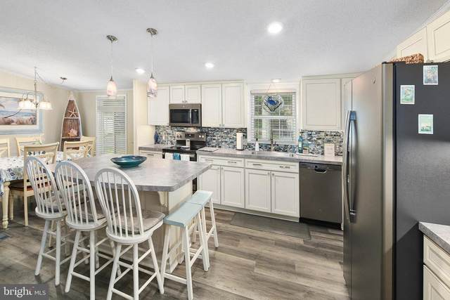 37240 Carolina Drive, FRANKFORD, DE 19945 (#DESU2002692) :: Linda Dale Real Estate Experts