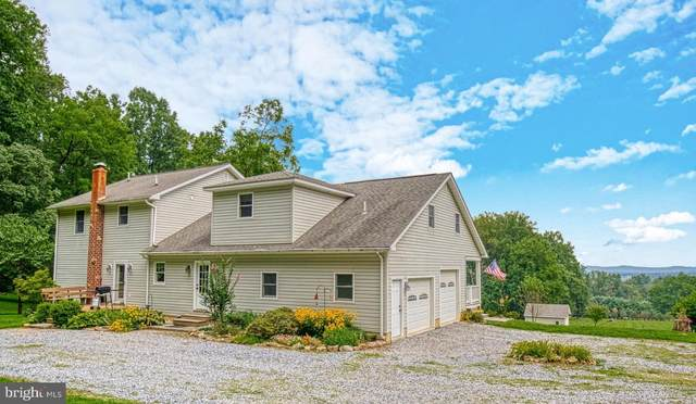 12637 Mountain Road, LOVETTSVILLE, VA 20180 (#VALO420128) :: Pearson Smith Realty