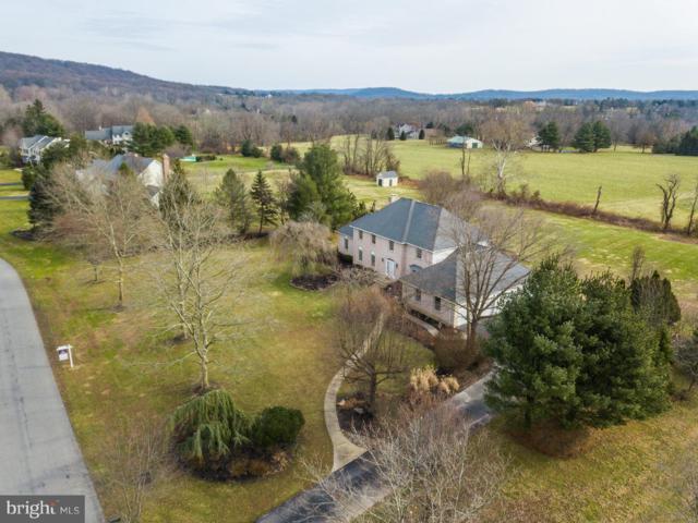 6 Devonshire Drive, NEW HOPE, PA 18938 (#1009912296) :: Colgan Real Estate