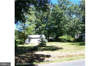 408-- Bay City Road, STEVENSVILLE, MD 21666 (#1000038299) :: Remax Preferred | Scott Kompa Group