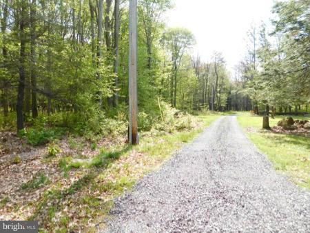 Lot 17 Lakeridge Heights, MOUNT STORM, WV 26739 (#1000040277) :: Eng Garcia Grant & Co.