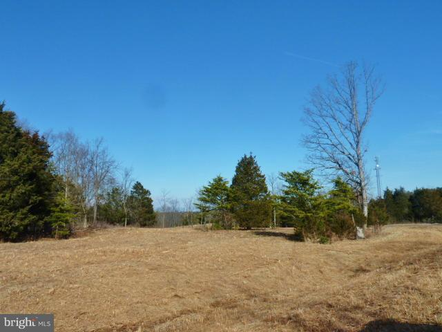 LOT 40 Comforter Lane, MIDDLETOWN, VA 22645 (#1000074669) :: AJ Team Realty