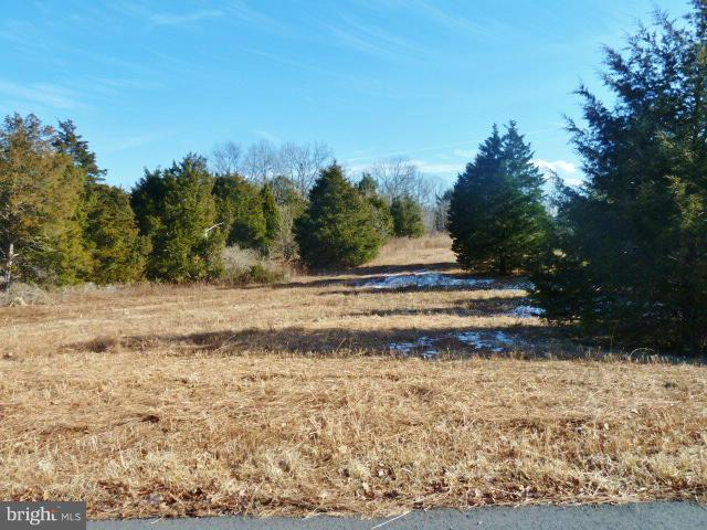 LOT 41 Comforter Lane, MIDDLETOWN, VA 22645 (#1000074687) :: The Sky Group