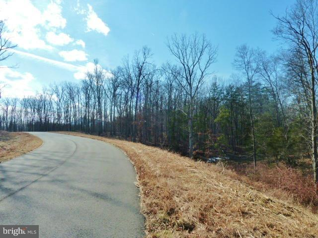 LOT 32 Comforter Lane, MIDDLETOWN, VA 22645 (#1000074693) :: AJ Team Realty