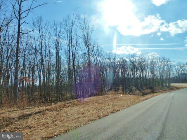LOT 37 Comforter Lane, MIDDLETOWN, VA 22645 (#1000074755) :: The Piano Home Group