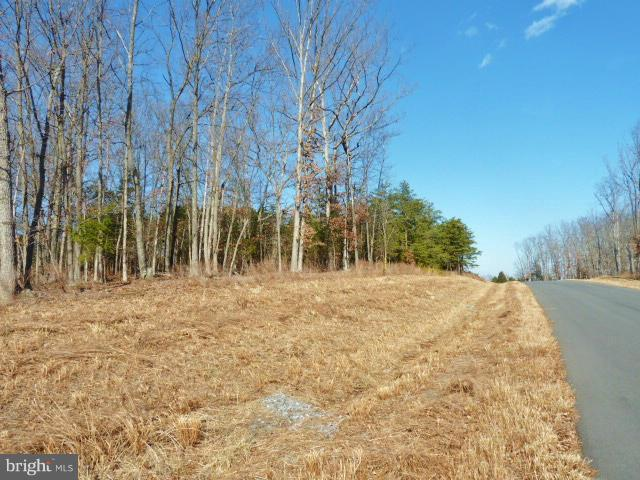LOT 38 Comforter Lane, MIDDLETOWN, VA 22645 (#1000074765) :: The Miller Team