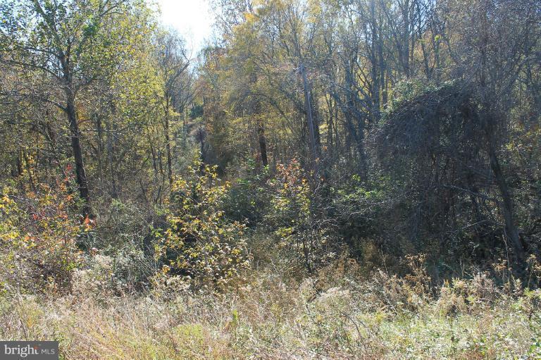 13090 Budds Creek Road - Photo 1
