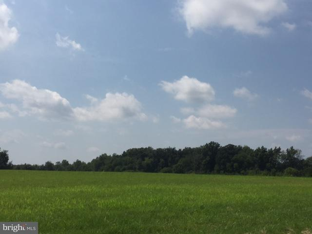 CORNER OF RUGGLES &  Corner Of Ruggles And Fsk Road, TANEYTOWN, MD 21787 (#1000081033) :: Charis Realty Group