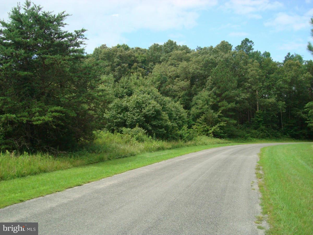 Belmont Lane - Photo 1
