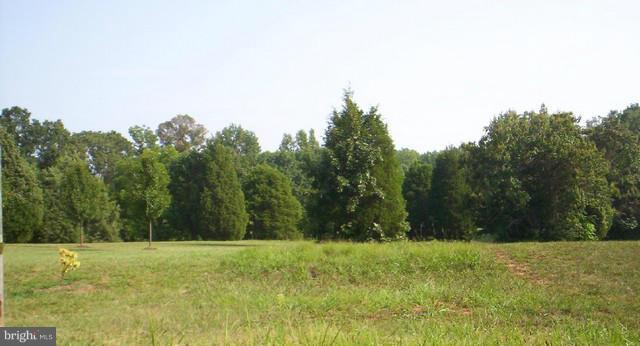 LOT 63 Tara Woods Drive, BUMPASS, VA 23024 (#1000091633) :: ExecuHome Realty