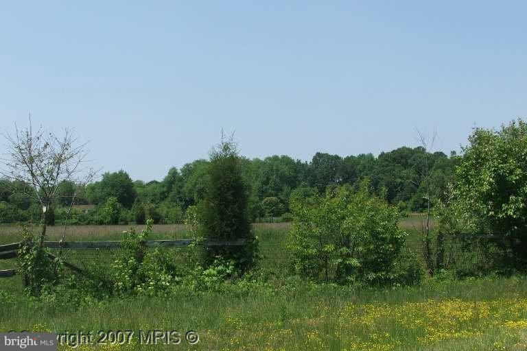 6111 Red Haven Road - Photo 1