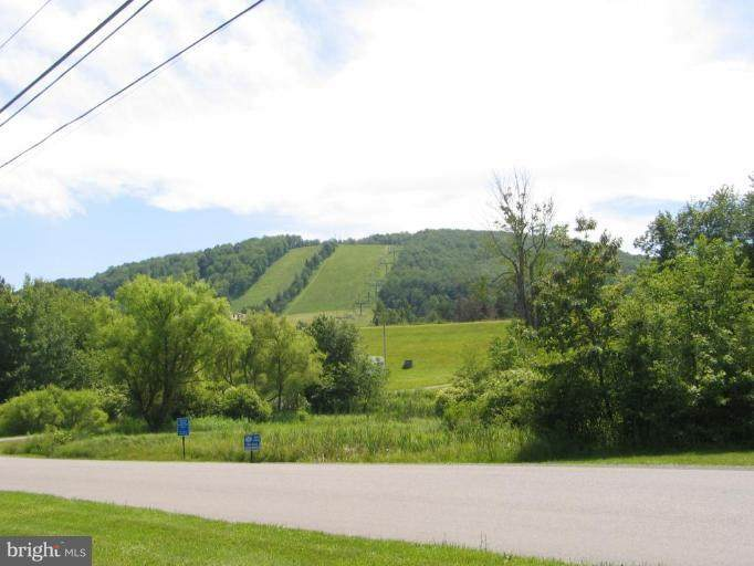 Marsh Hill Road - Photo 1