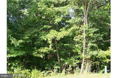 Vickie Way, BASYE, VA 22810 (#1000120883) :: Pearson Smith Realty
