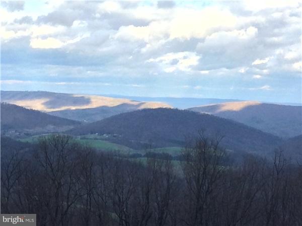 11802 Valley Overlook Drive NE, FLINTSTONE, MD 21530 (#1000128471) :: AJ Team Realty