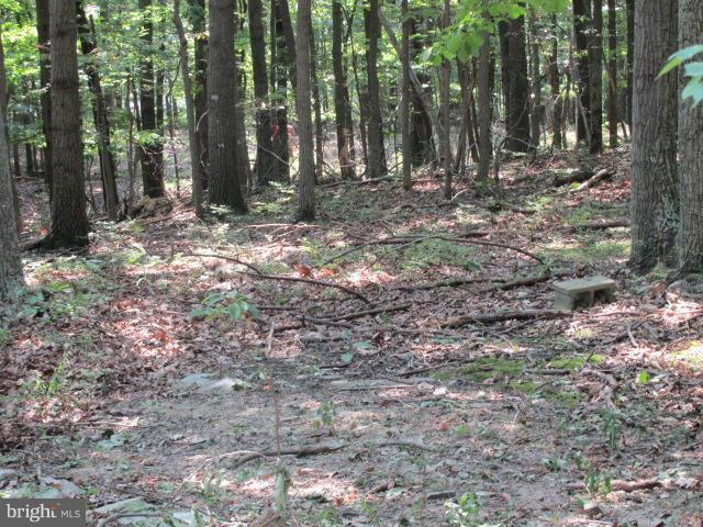 LOT#3 Panther Drive W, WINCHESTER, VA 22602 (#1000138923) :: Colgan Real Estate