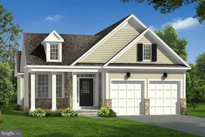 Buttercup Dr, WHITE POST, VA 22663 (#1000139799) :: Debbie Dogrul Associates - Long and Foster Real Estate