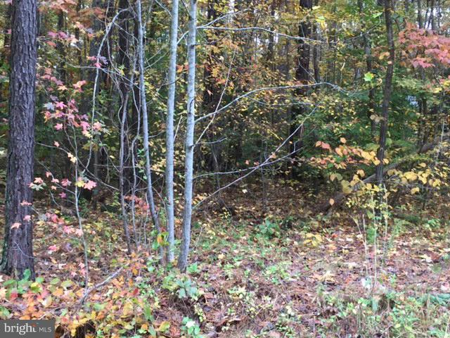 723 Lake Caroline Drive, RUTHER GLEN, VA 22546 (#1000142665) :: Colgan Real Estate