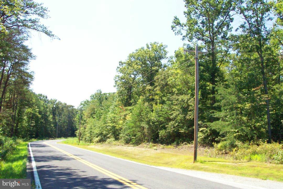 Ripley Road - Photo 1