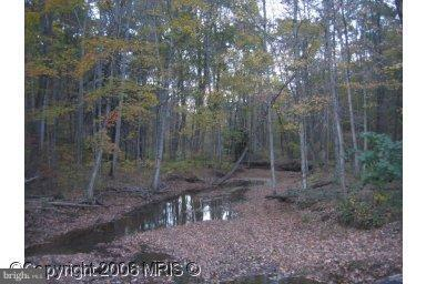 Henderson Heirs, BERKELEY SPRINGS, WV 25411 (#1000167957) :: Revol Real Estate