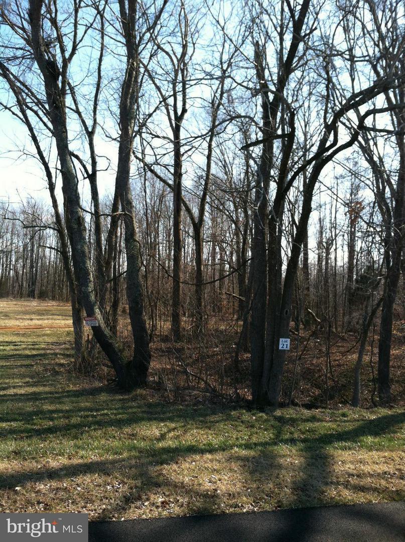 14436 Frontier Trails Court - Photo 1