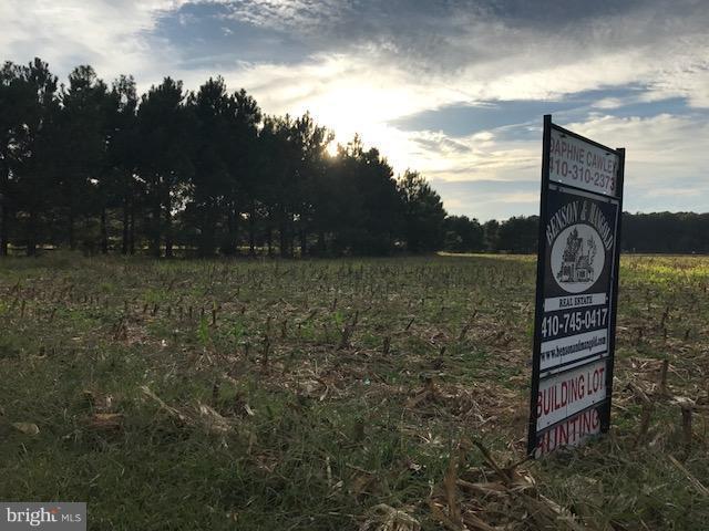 Mcdaniel Farm Lane, MCDANIEL, MD 21647 (#1000977741) :: Eric Stewart Group