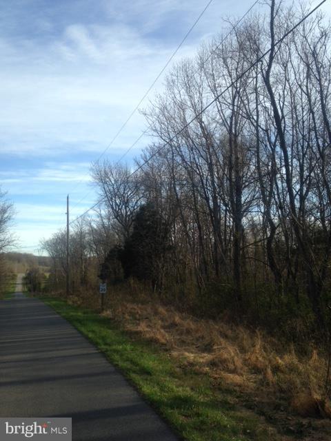 Leisure Way, SHEPHERDSTOWN, WV 25443 (#1001812297) :: The Miller Team