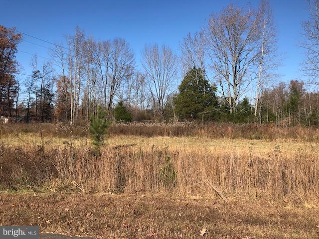 1 Bella Woods Dr E, BUMPASS, VA 23024 (#1004152783) :: Green Tree Realty