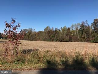 3 Bella Woods Dr., BUMPASS, VA 23024 (#1004153833) :: Green Tree Realty