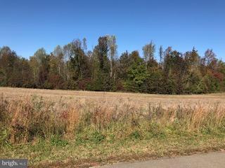 4 Bella Woods Dr, BUMPASS, VA 23024 (#1004154721) :: Green Tree Realty
