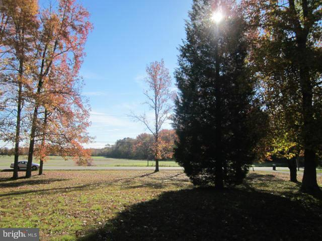 1.56 ACRES Henderson Road, MARYDEL, MD 21649 (#1004284605) :: RE/MAX Coast and Country