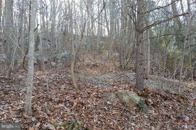 18 Ben Davis Drive, LINDEN, VA 22642 (#1004439145) :: Colgan Real Estate