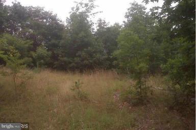 0 Retreat Lane, WINCHESTER, VA 22603 (#1005069421) :: The Miller Team