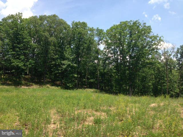 Timberlake Drive, NEW CREEK, WV 26743 (#1005914893) :: SURE Sales Group