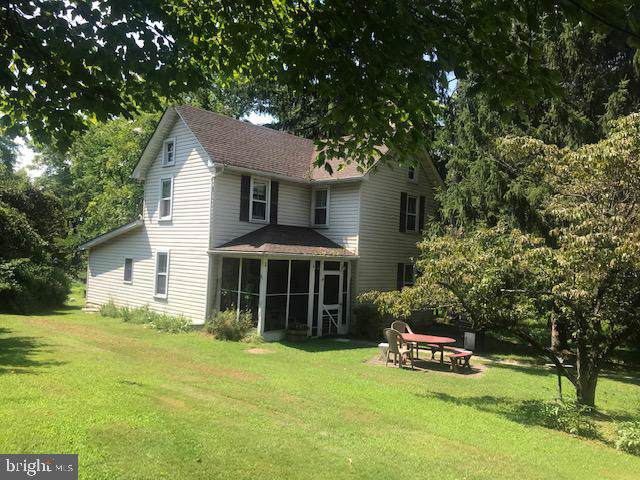295 Hollow Horn Road, PIPERSVILLE, PA 18947 (#PABU100005) :: LoCoMusings