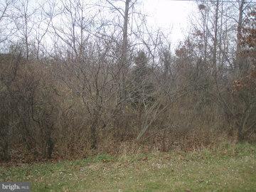 9 Yvonne Trail, FAIRFIELD, PA 17320 (#1000097258) :: CENTURY 21 Core Partners