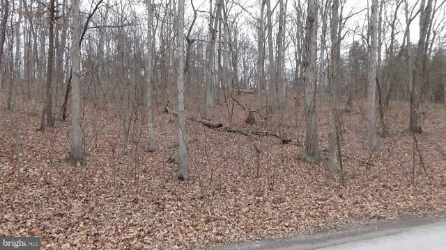 Mccubbins Hollow Lot 100, GERRARDSTOWN, WV 25420 (#1000270702) :: Hill Crest Realty