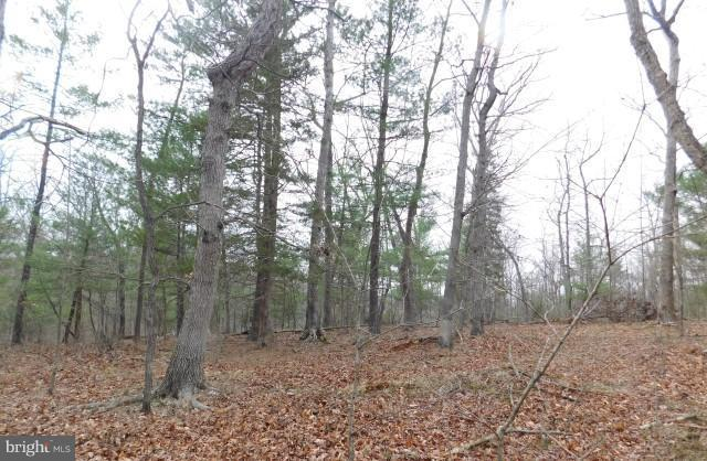 Lot 2 Hallows Way, GERRARDSTOWN, WV 25420 (#1000403684) :: ExecuHome Realty