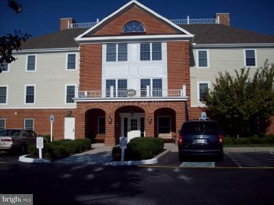 1105 S Schumaker Drive B-308, SALISBURY, MD 21804 (#1001562164) :: The Emma Payne Group