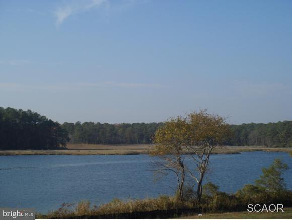 36946 Creekhaven Drive, SELBYVILLE, DE 19975 (#1001565550) :: The Windrow Group