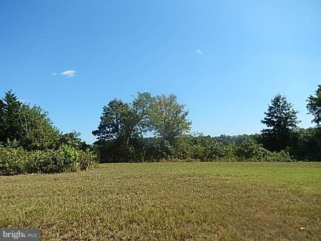 219 Chandler Street, MILTON, DE 19968 (#1001566394) :: RE/MAX Coast and Country