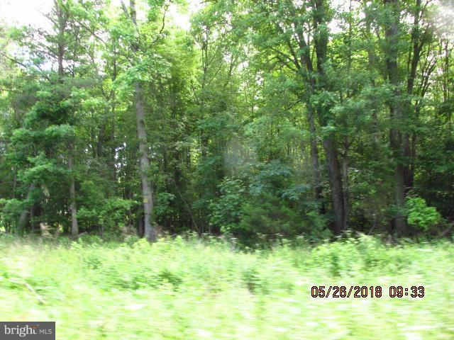 0 Burnetts Road, MILFORD, VA 22514 (#1001759698) :: Eng Garcia Grant & Co.