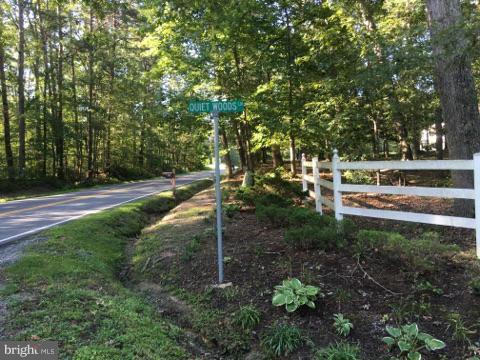 Quiet Woods Lane, PARTLOW, VA 22534 (#1001778874) :: Eng Garcia Grant & Co.