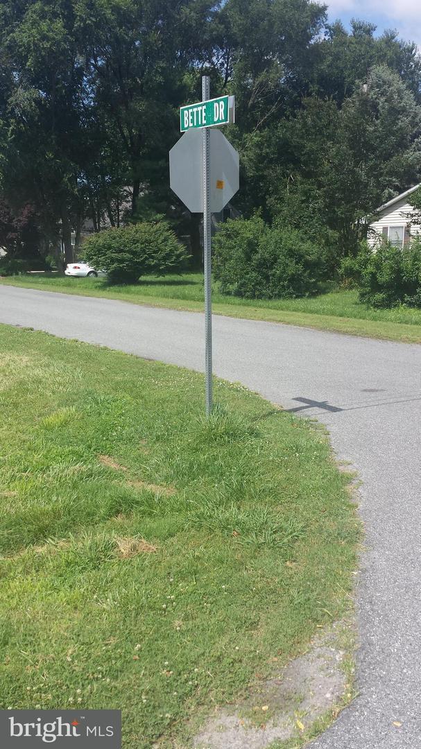 lot 92 Dixie Drive, BISHOPVILLE, MD 21813 (#1001927254) :: The Rhonda Frick Team