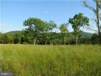 Off Old Mtn Run Trail, PURGITSVILLE, WV 26852 (#1001948570) :: Blue Key Real Estate Sales Team