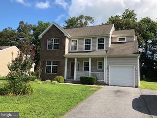 19052 Carey Lane, GEORGETOWN, DE 19947 (#1002099010) :: The Allison Stine Team
