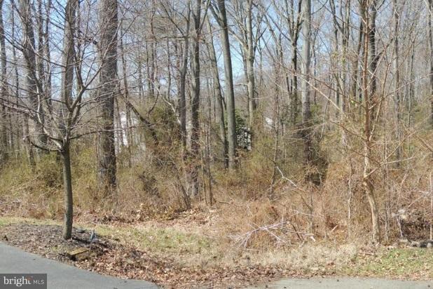 3520 Cedar Drive, EDGEWATER, MD 21037 (#1002132890) :: Colgan Real Estate