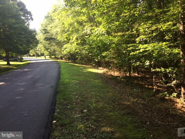 Lot 139 Pinehurst Drive, GORDONSVILLE, VA 22942 (#1002164240) :: Advance Realty Bel Air, Inc