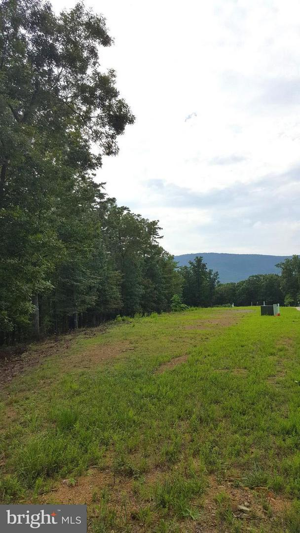 LOT 12 Creek Valley Drive, BASYE, VA 22810 (#1002254162) :: Eng Garcia Grant & Co.