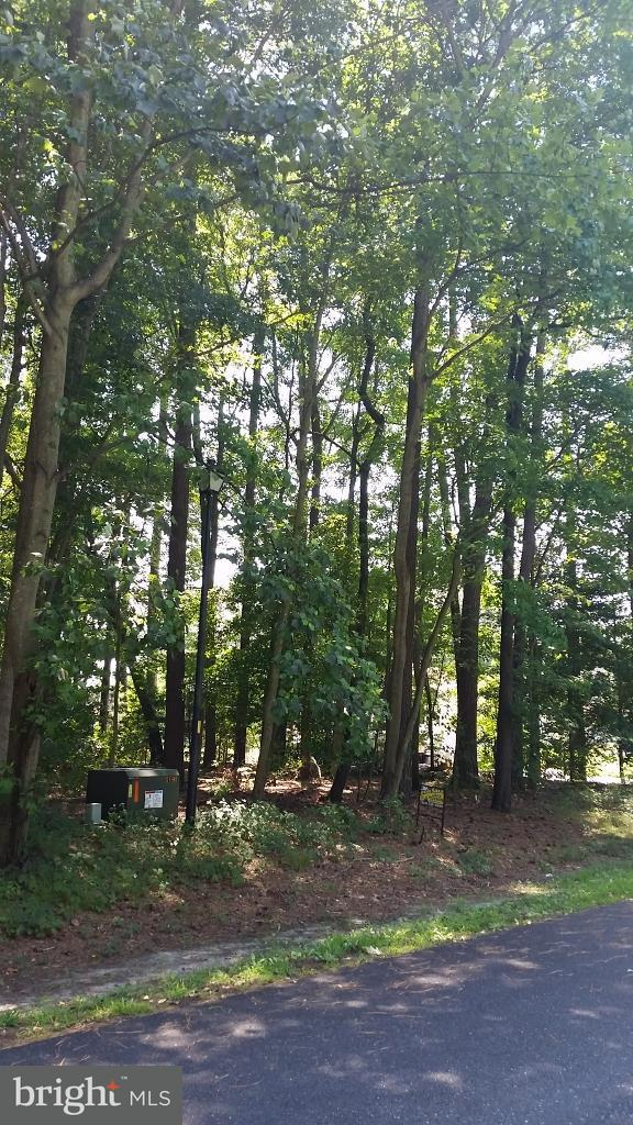 Lot 3 Prince Georges Drive, DAGSBORO, DE 19939 (#1002256790) :: The Windrow Group